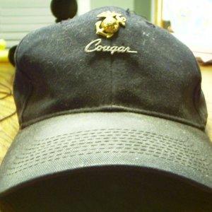 Cougar Hat Pin