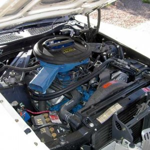 1971 429CJ Cat Underhood (3)