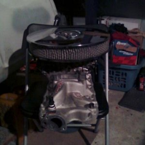 "my fresh and clean intake set with edelbrock performance manifold and performer 600cfm carb with bigger jets 1""carb spacer and soon to be K&N"