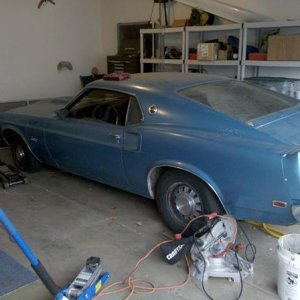 Trying to buy 1969 Mustang Fastback s code
